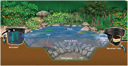 Micropond kit makes it easy to have a backyard pond Setting up fish pond